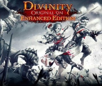 Divinity: Original Sin Enhanced Edition вышла на Mac, Linux и SteamOS