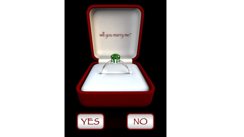 4 - Will You Marry Me?